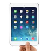 iPad Mini (Retina) Repairs